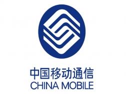 中国移动公司采购蓄电池活化仪